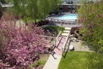 Portland Courtyard and Outdoor Pool